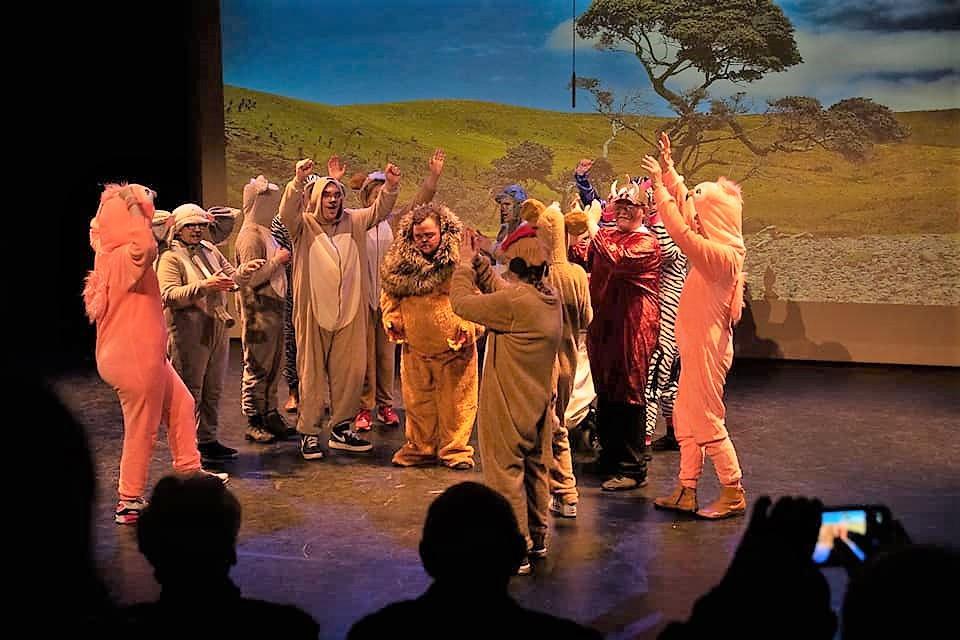 Theater Trots speelt leeuwenkoning in podium zuidheage, productie theater tromp